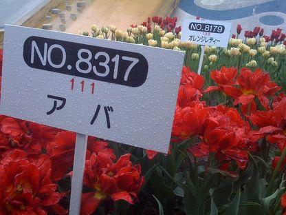 H210425_006